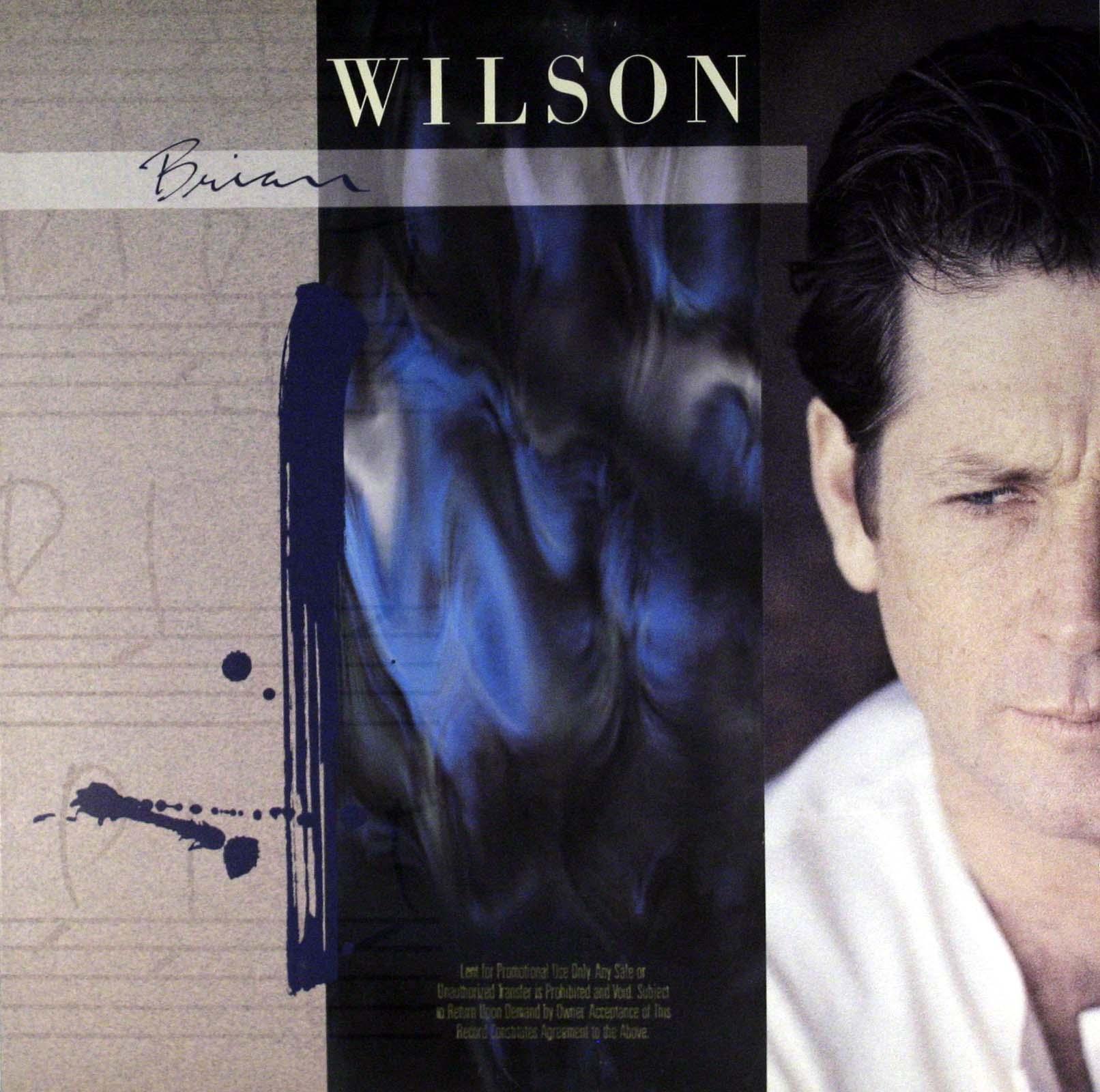 Brian Wilson - Brian Wilson Album
